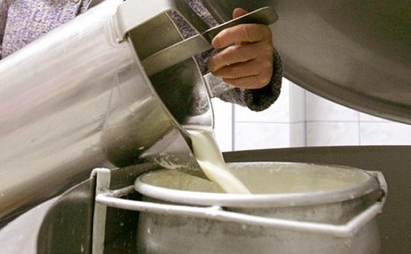 Magyar tejszállítmányok indulhatnak Kínába