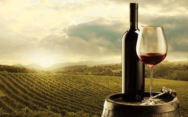 A szőlő-bor és a gabona magyarországi eredményeiről és a szakmai együttműködés lehetőségeiről is tájékozódott a kínai Ningszia-Huj autonóm tartományból érkezett delegáció