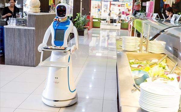 Robotpincér egy kínai étteremben Győrben