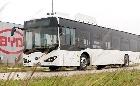 Átadták a BYD első elektromos buszát