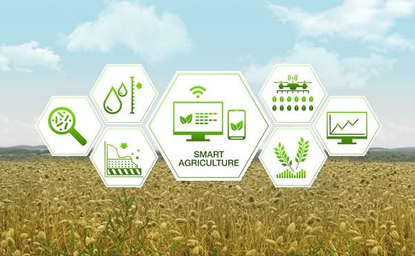 Új külpiaci távlatokat nyithat az agrárdigitalizáció