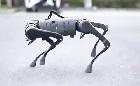 Kínai robotkutya a Star Wars zenéjére indul mozgásba