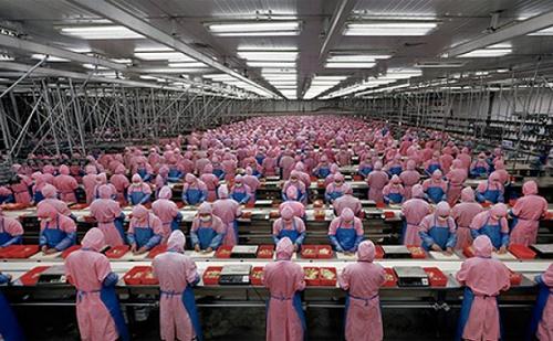 Egységesül az élelmiszeripari termékek minősége Kínában